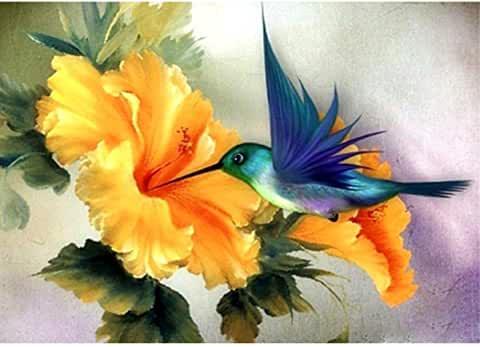Diamond Humming Bird